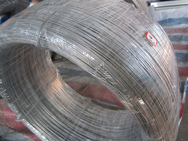 Stainless Steel Wire Buddle
